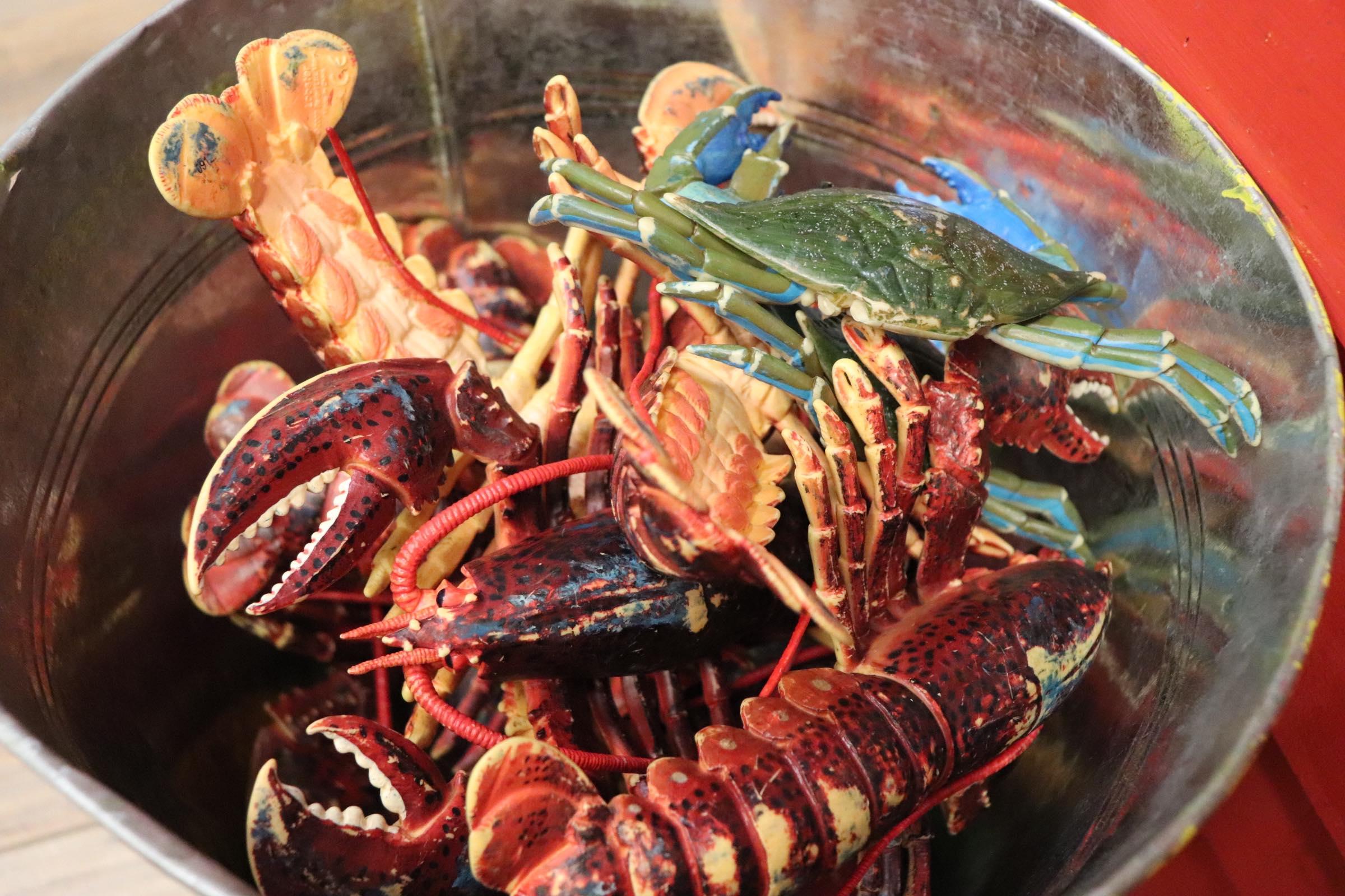 Bucket of 'sea catch' (Photo By Simone Verria).jpg