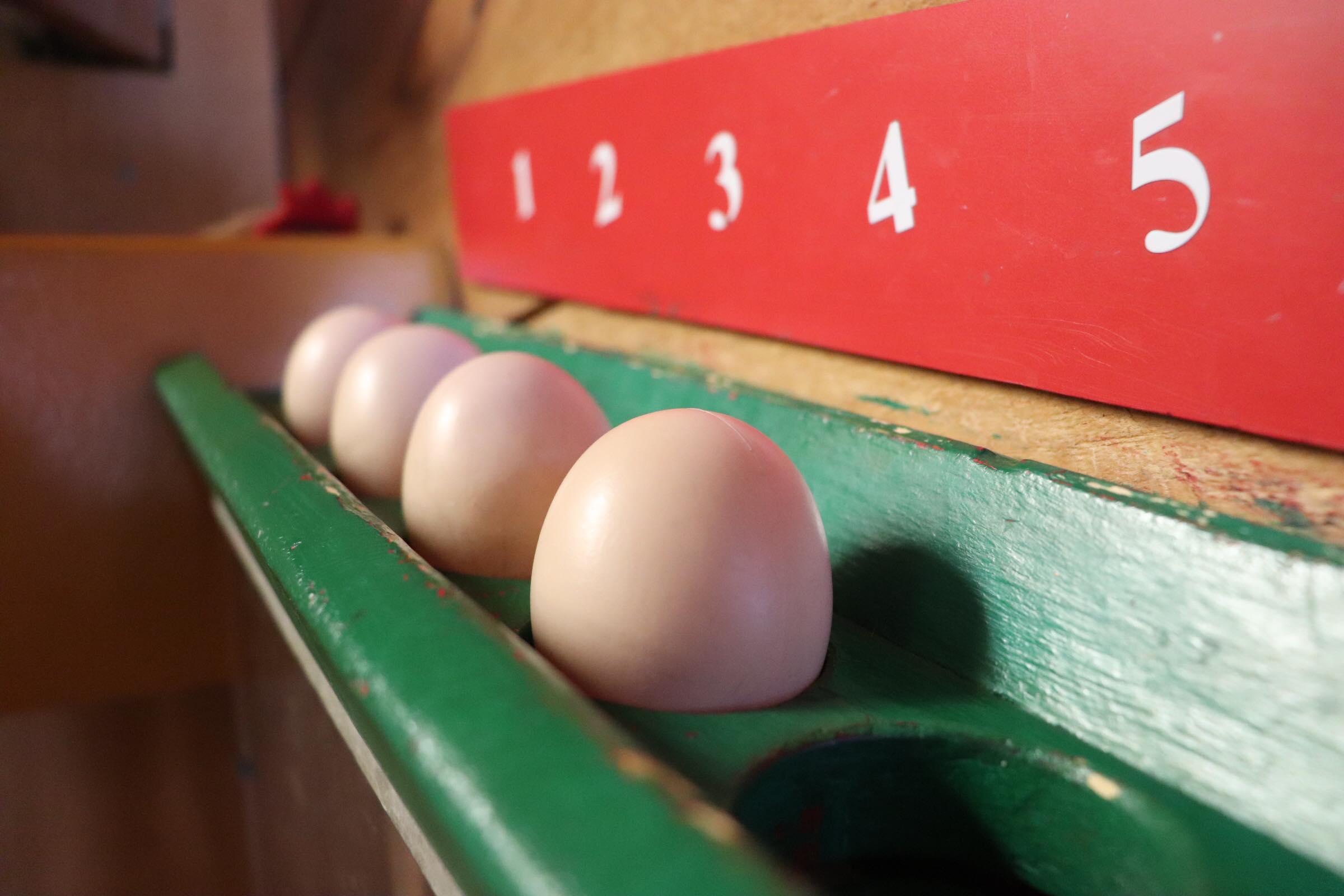 Eggs (Photo By Simone Verria).jpg