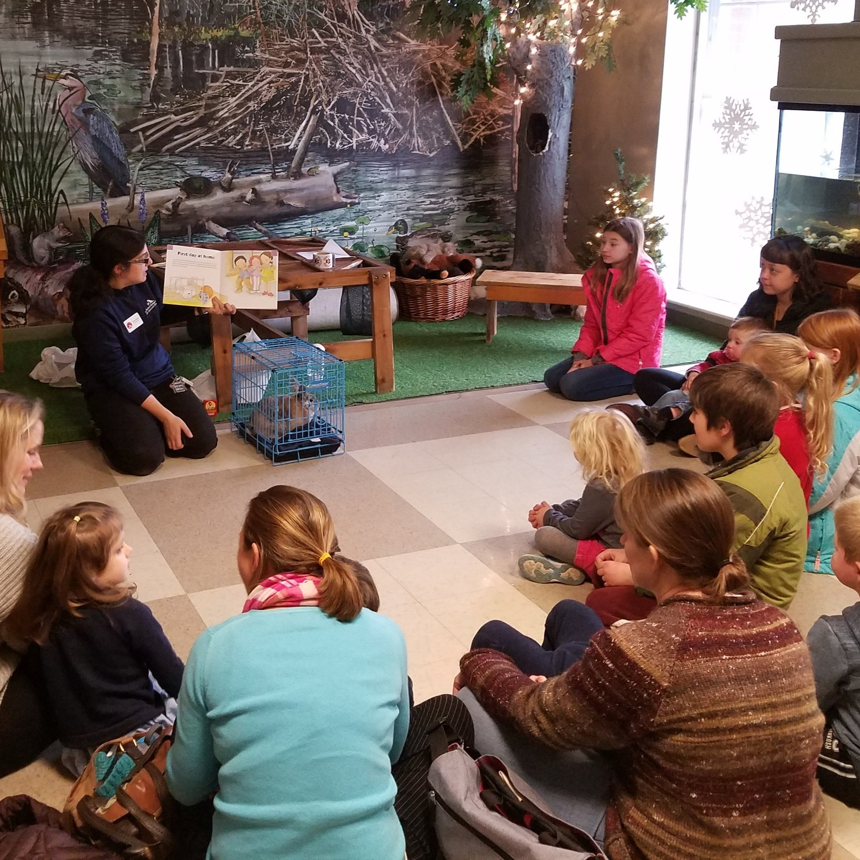Ranger Station - Become a ranger and identify plants and animals native to Maine!