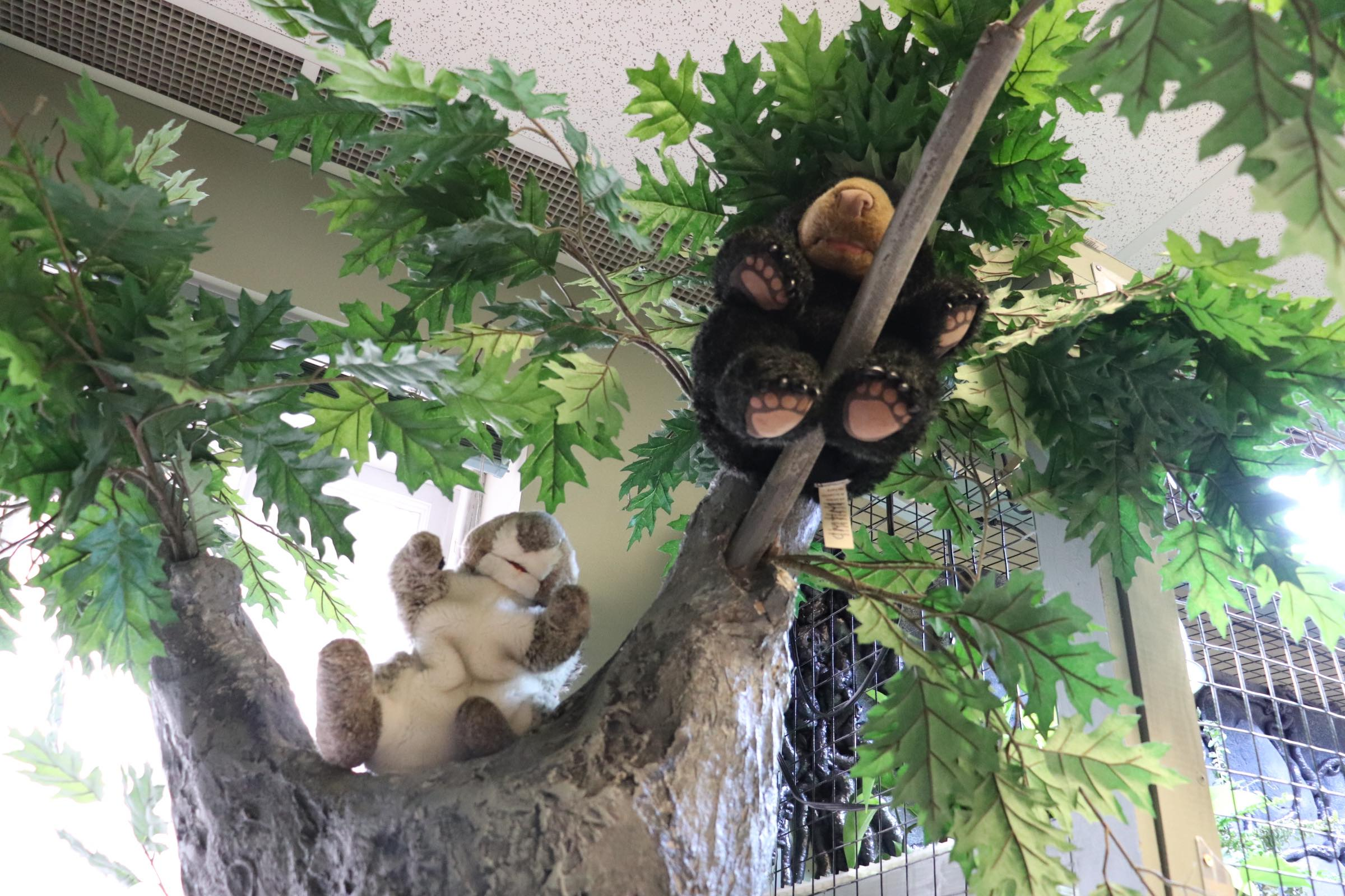 Tree with play animal critters (Photo By Simone Verria).jpg