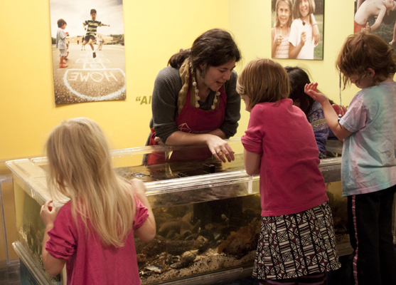 Educator shows children critters in Touch Tank (Photo by Olivia Birdsall).jpg