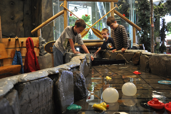 Young visitors play in Cascade Stream of our Discovery Woods (sponsored by L.L Bean)