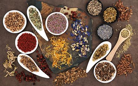 naturopathy -