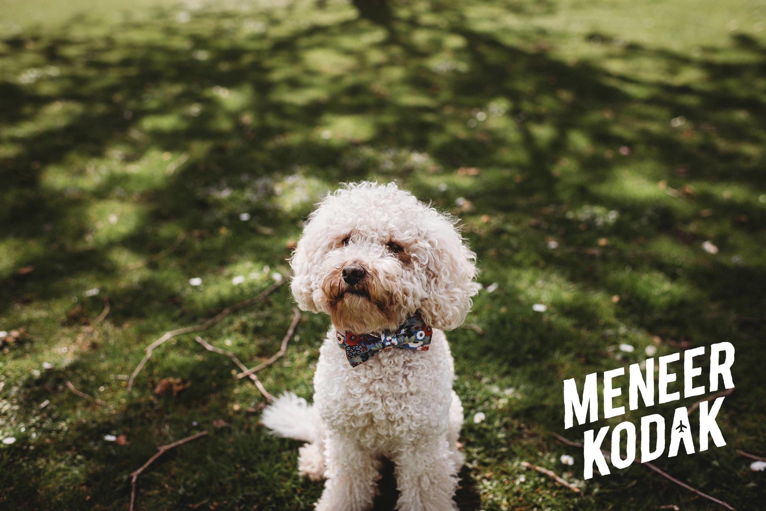Meneer Kodak - Bruidsfotograaf - Amsterdam - M&J-027.jpg