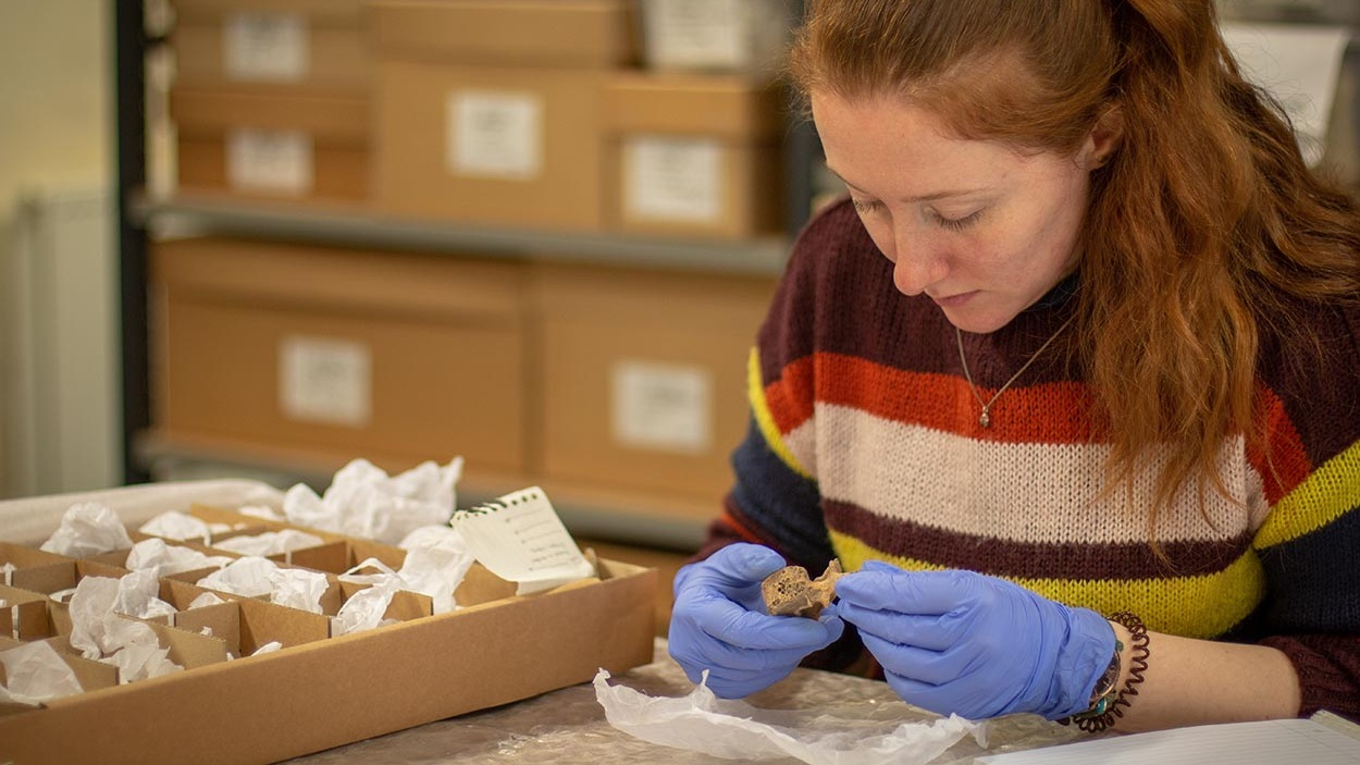 - York Archaeological Trust's in-house researchers and curatorial staff specialise in a wide range of services relating to the assessment, analysis, recording and care of archaeological artefacts.They can also offer advice on policy and procedure relating to collections management and access.The Trust's Collections Development policy can be viewed here.