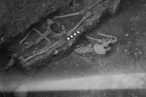 fig3: Human remains from the 1958 Trentholme Drive excavation, © L.P. Wenham Collection, courtesy of York Archaeological Trust