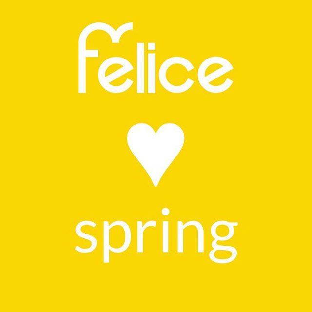 #spring #pommier #bretagne #simpleetbeau #lavieestbelle