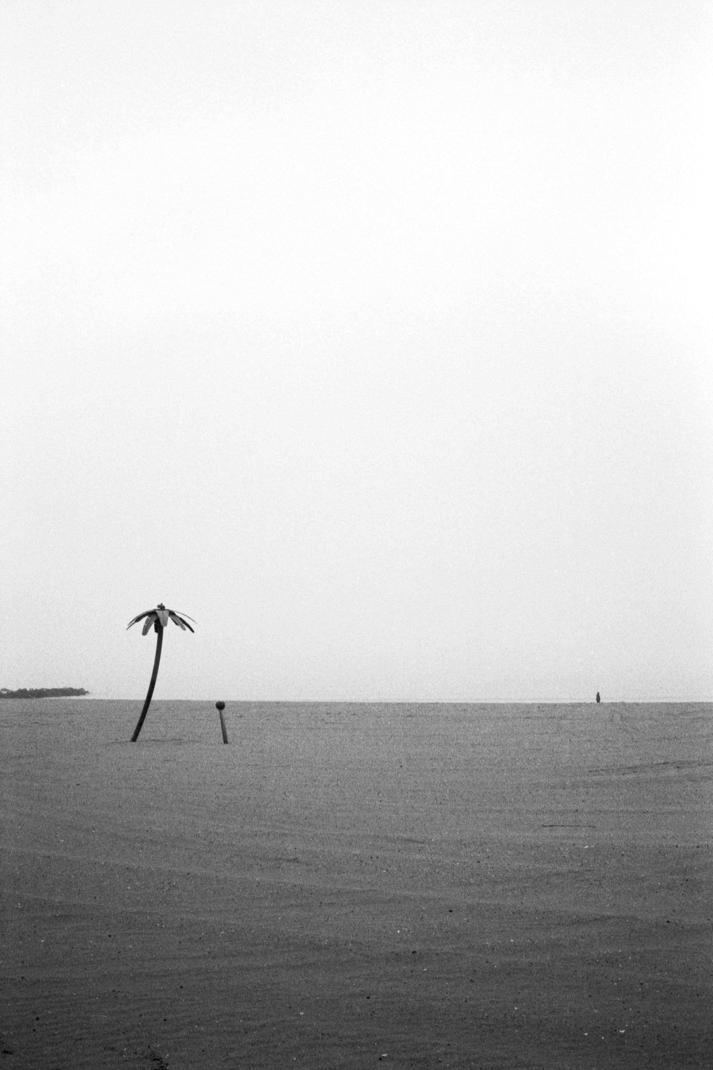 LeicaM6_1901_Deal052-Edit.jpg