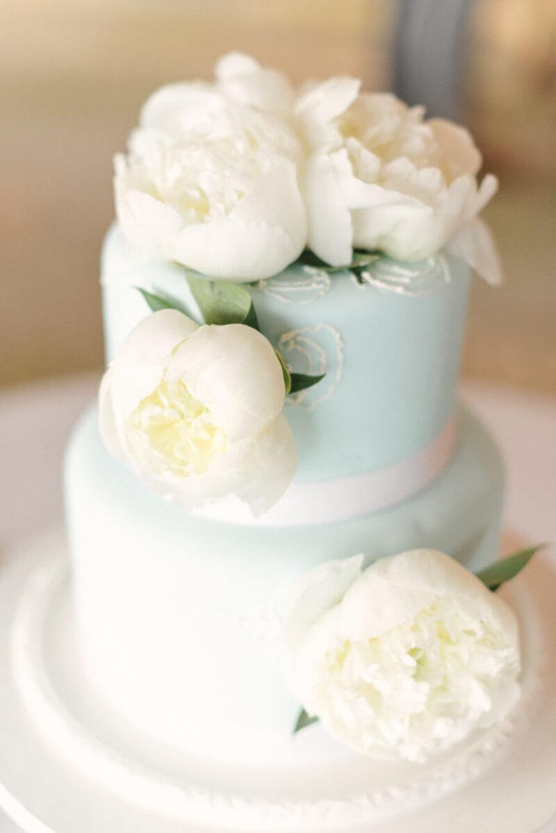 artful-cakes-fine-art-film-6.jpg