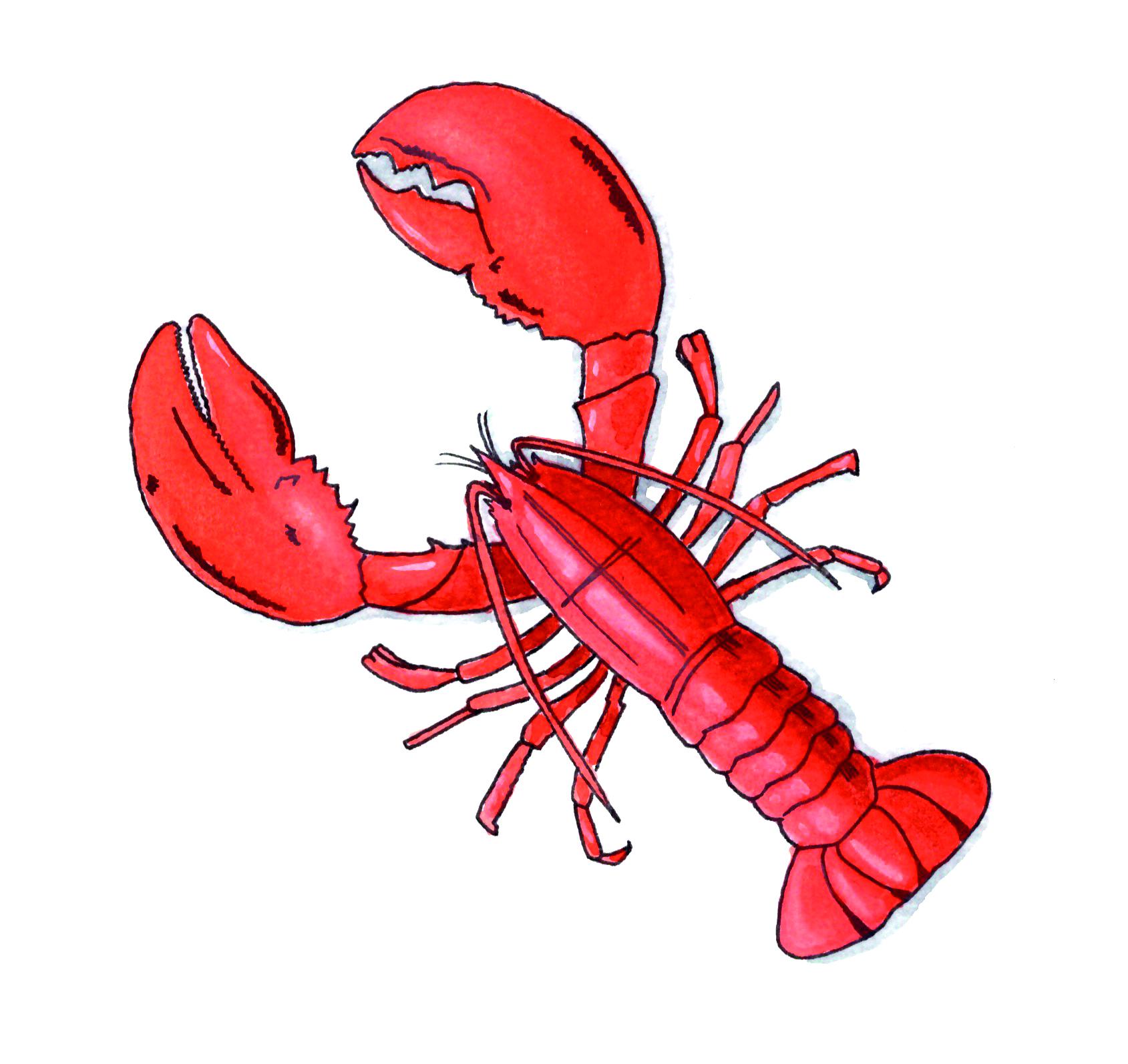 Lobster-CMYK.jpg