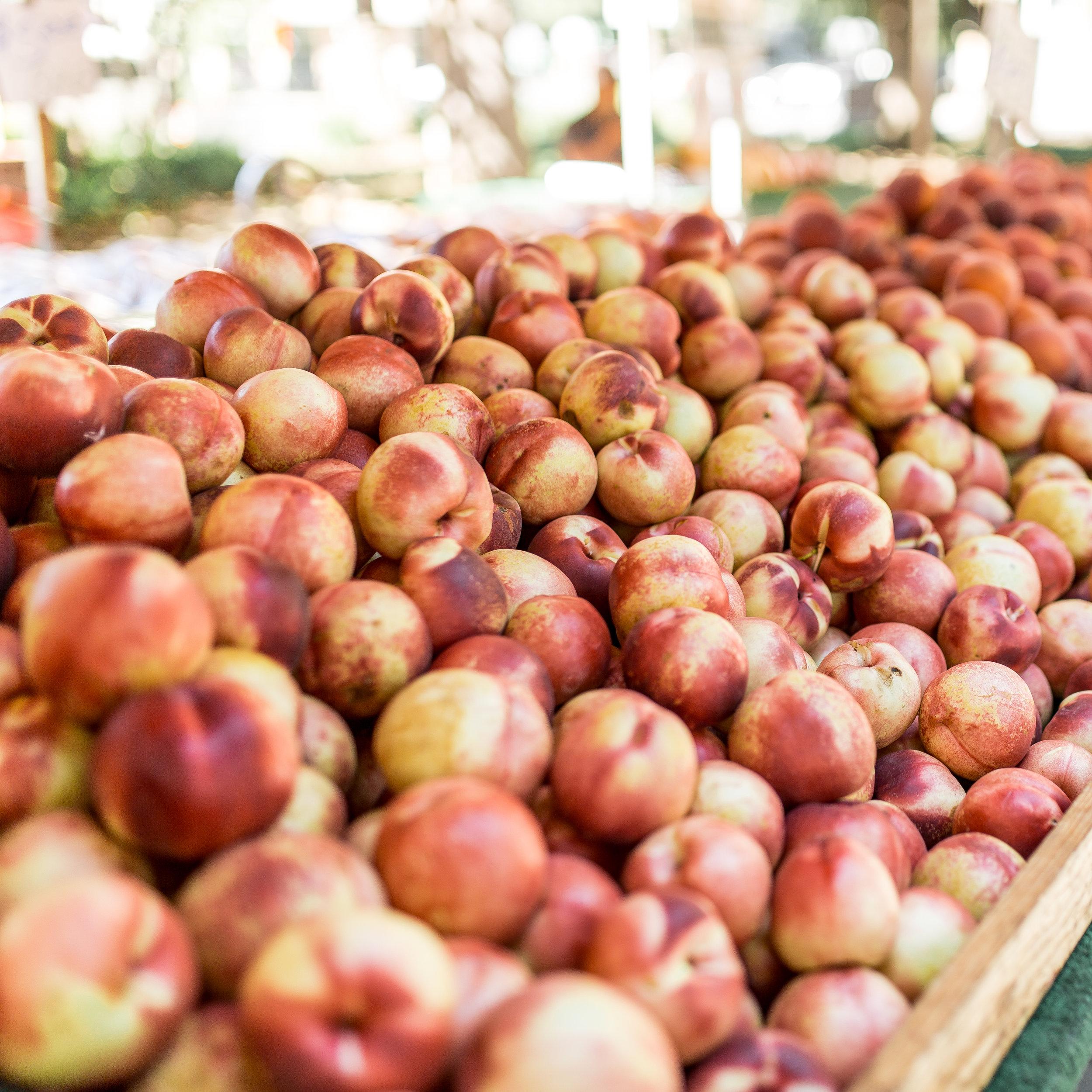 Farmers Market-65.jpg