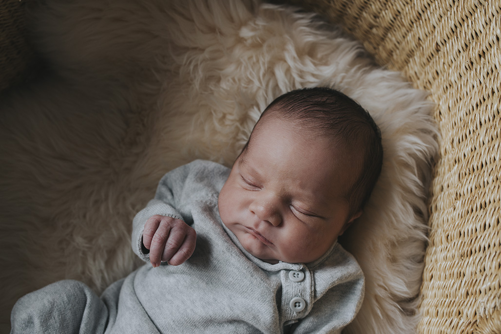 Vermont newborn photographer/ baby finch's newborn session