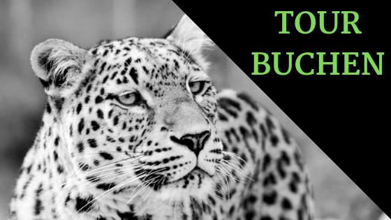 Tour buchen (1).png
