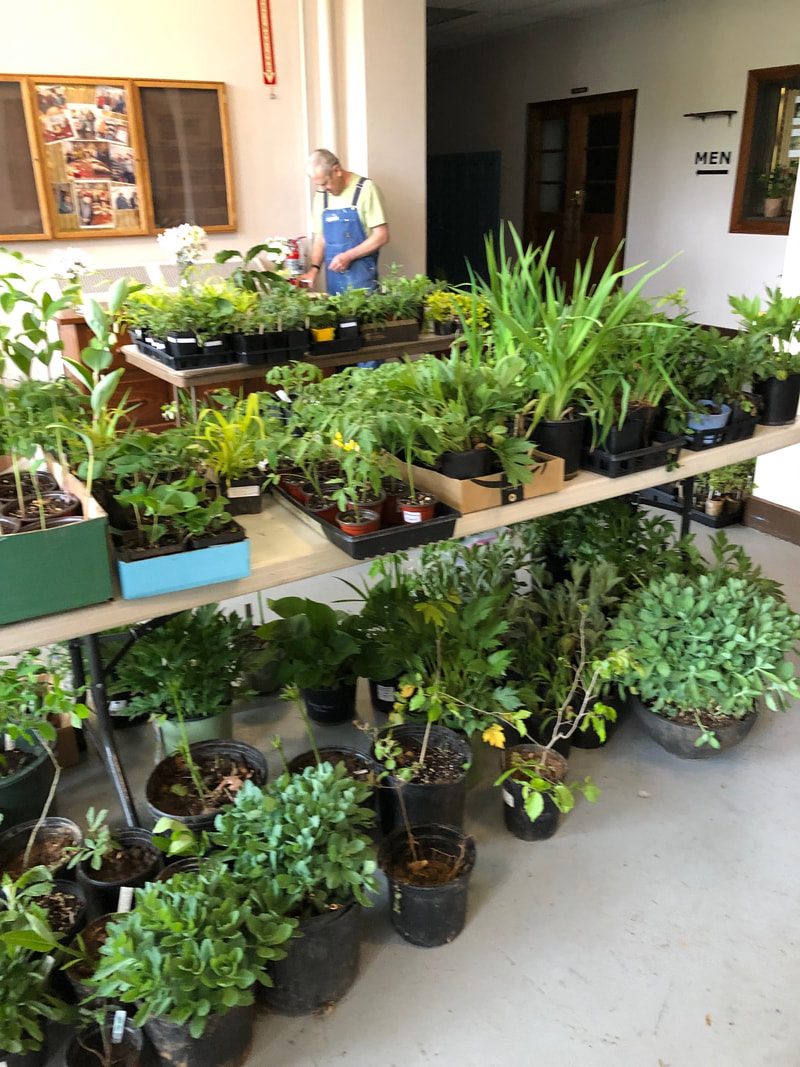 4/26 Before the Plant Sale
