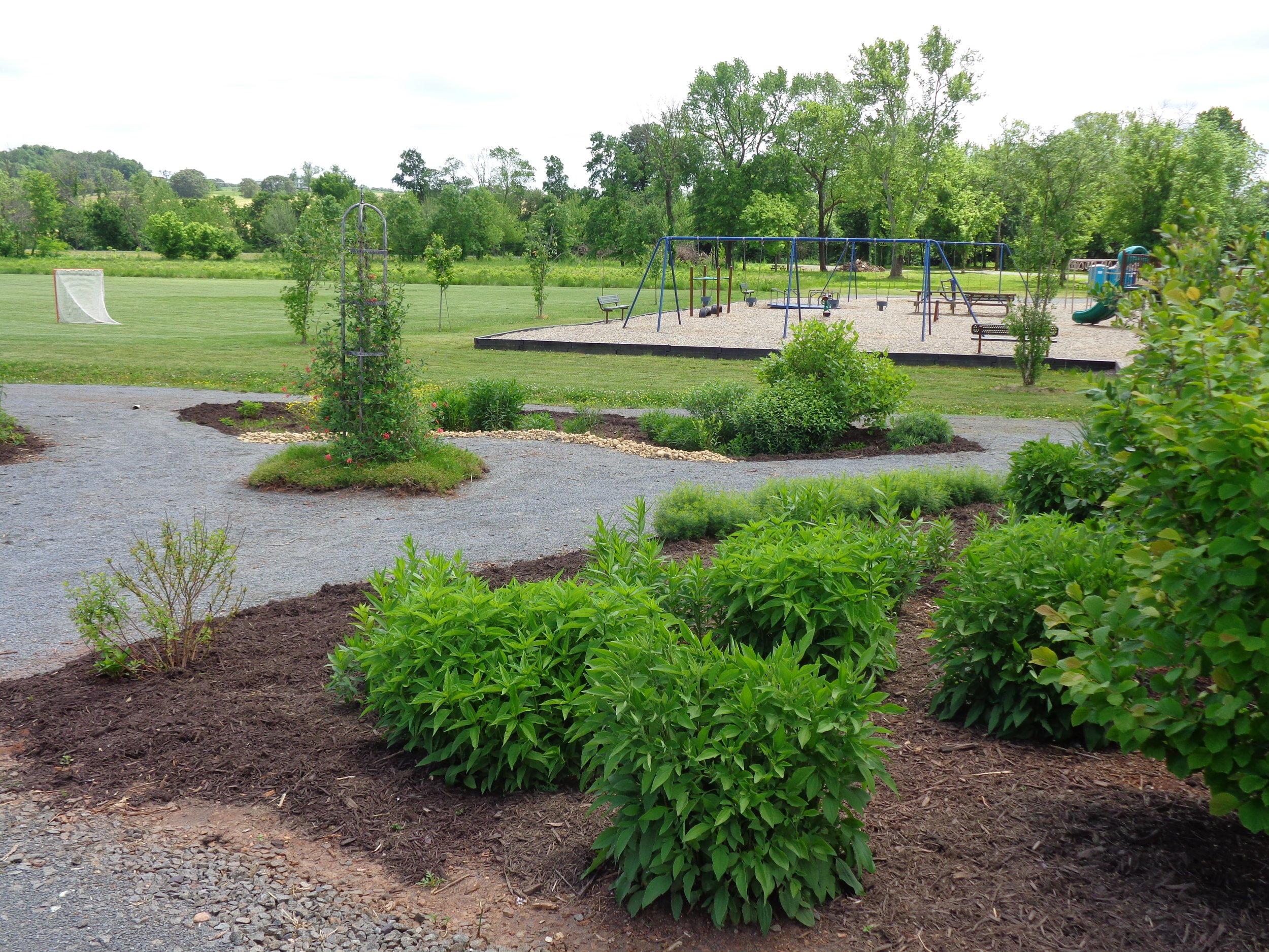 Pollinator Garden at Lenn Park