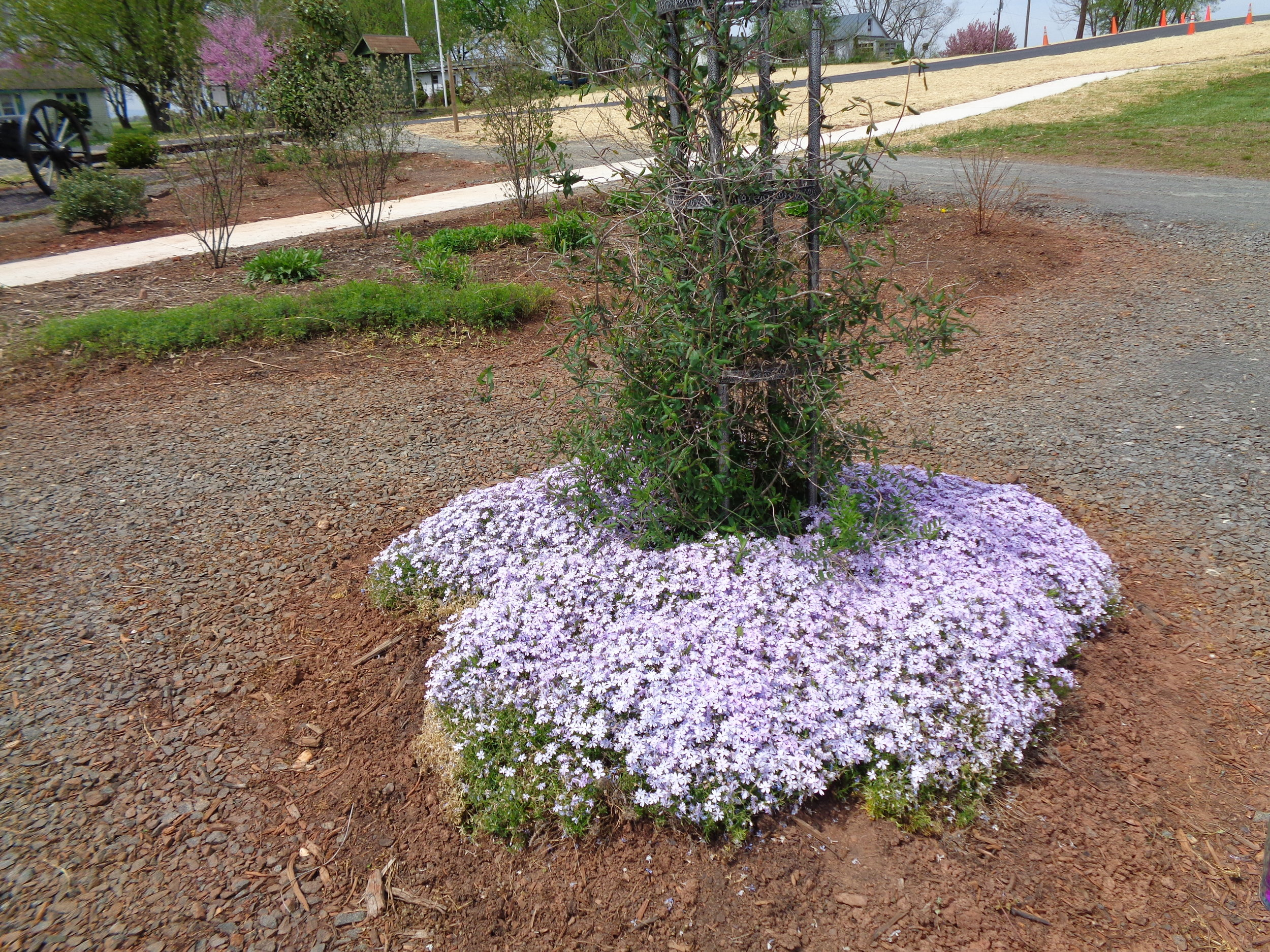 Lenn Park Pollinator Garden