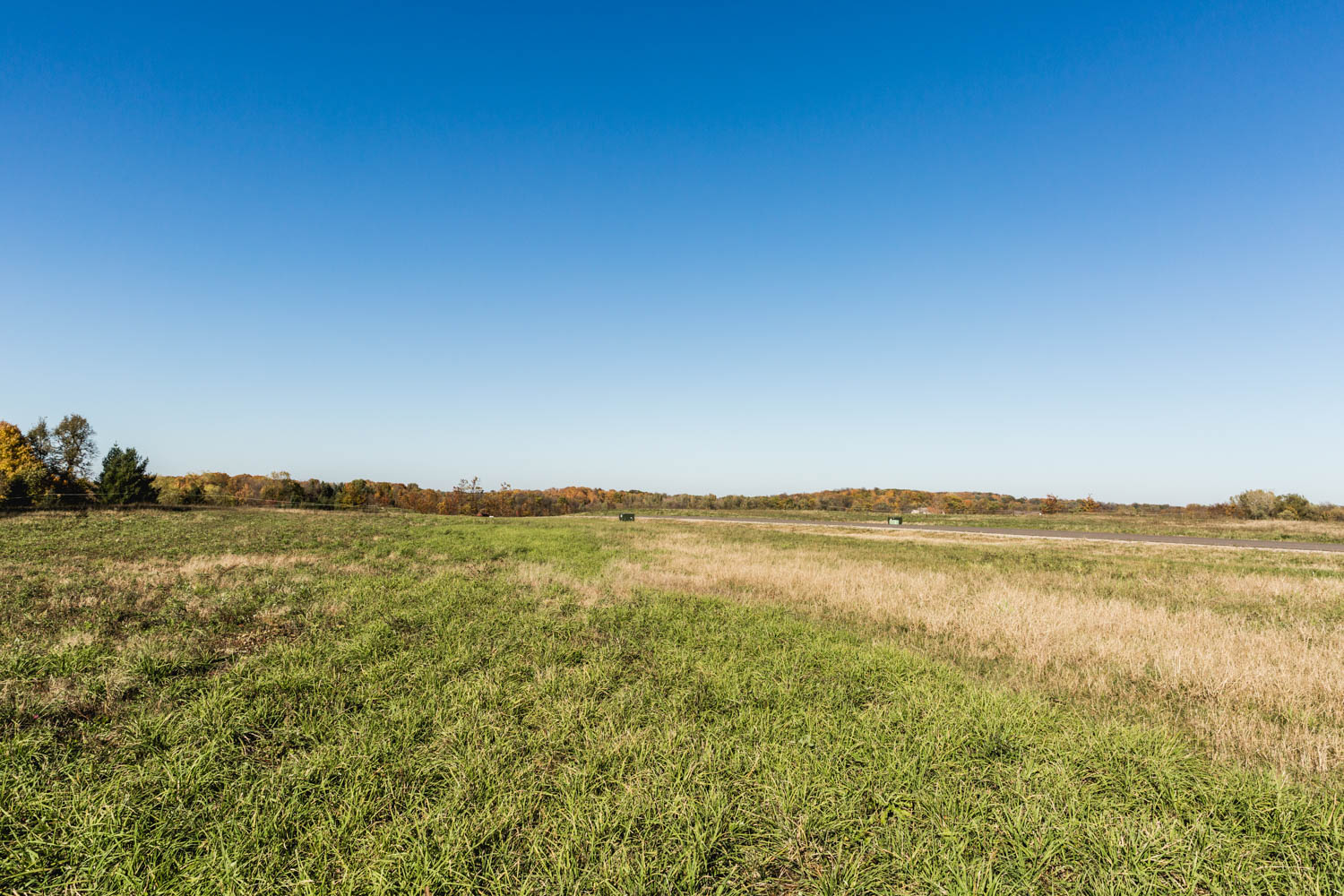 Lot 118 — View North