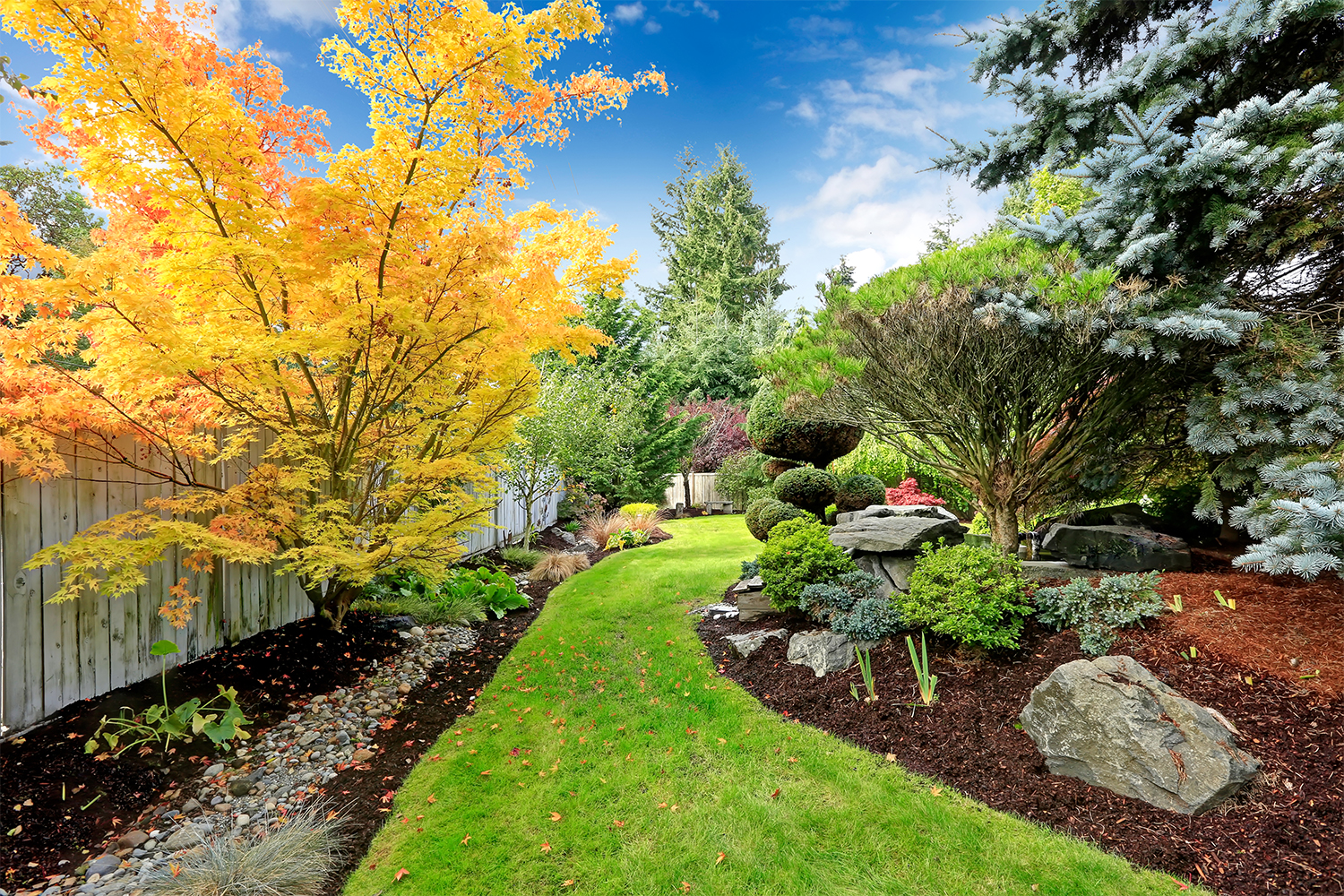 beautifully landscaped yard featuring a variety of plants, trees, shrubs and mulch.