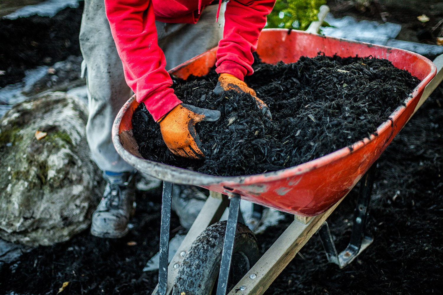 mulching a property, the landscape specialist offering professional landscaping and personal gardening in MA