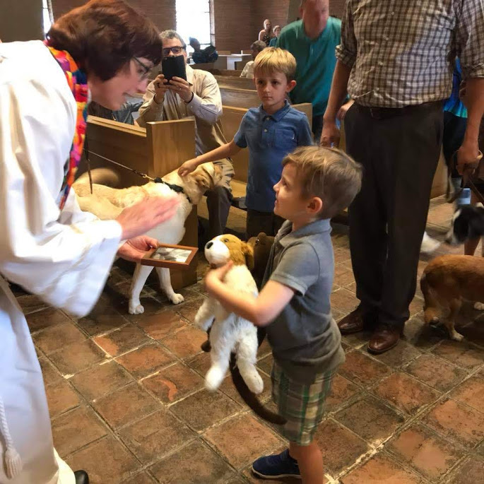 Blessing of Animals.jpg