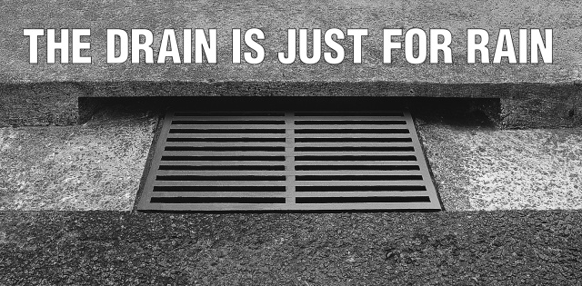 this-drain-is-just-for-rain.jpg