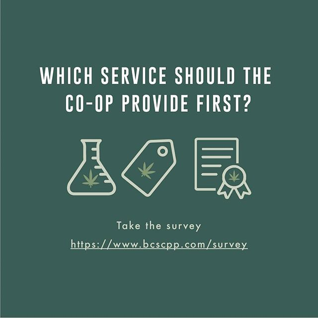 Calling all potential co-op members. We want to hear from you.  Which service do you want the cannabis co-op to focus on once operations begin? Retail networks? Plant breeding?  Please take a few minutes to complete the online survey to help shape the co-op.  Click the link in bio to participate.  #cooperative #craftcannabis #bcbud