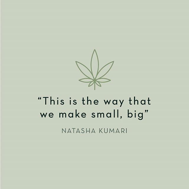 We want to make smaller cannabis growers and processors a big part of the cannabis industry in BC and across Canada.  Natasha Kumari of @grow.techlabs speaks with @victorysquaretechnologies on how our cannabis co-op intends to create a direct and self governed path for small cannabis operations. Click the link in our bio to view the interview.  #cannabiscommunity #bcbud #cooperative