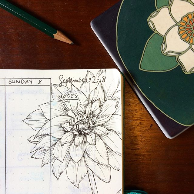 Sometimes creativity looks like a full-blown art project, and sometimes it looks like an unplanned doodle that overtakes your planner...my important notes to remember for the week are now: DAHLIA! 😉🌸 i love dahlias so this sounds good to me.  doodle inspired by @felicityandink's @skillshare class! . . . . #doodle #creativemoment #creativity #dahlia #doodlesofinstagram #bulletjournal #bujo #drawing
