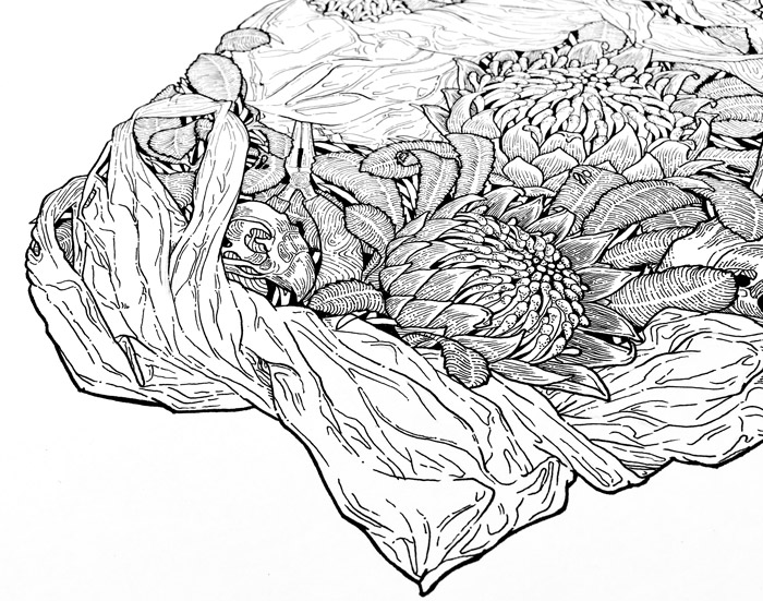 Sophia Mary Mac  Artist & Illustrator sophiamarymac.net Brisbane