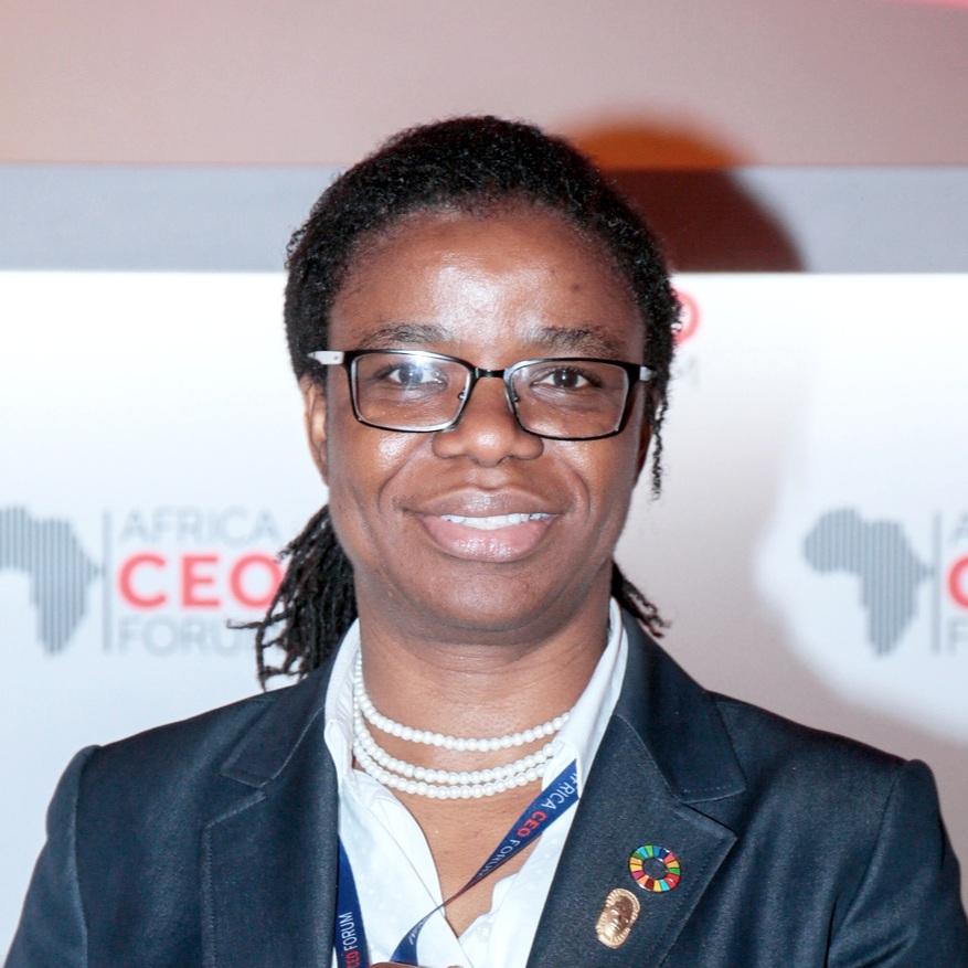 Yewande Sadiku, Executive Secretary, Nigeria Investment Promotion Commission -