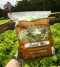 Salads of Palmwood.jpg