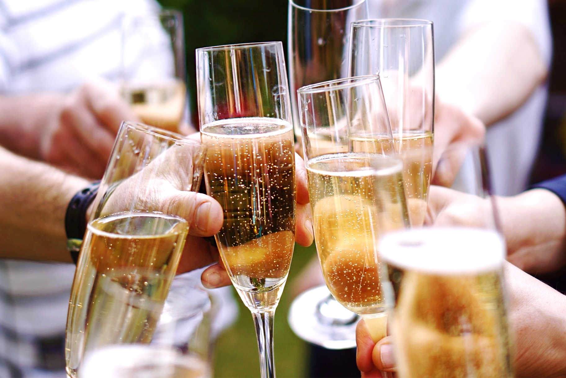 the-feast-champagne-shortage-cheers.jpg
