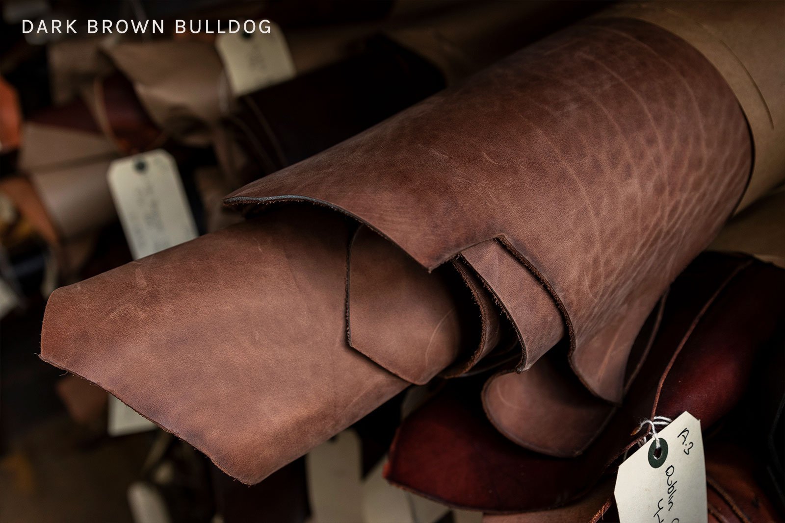 DarkBrownBulldog_Carousel.jpg