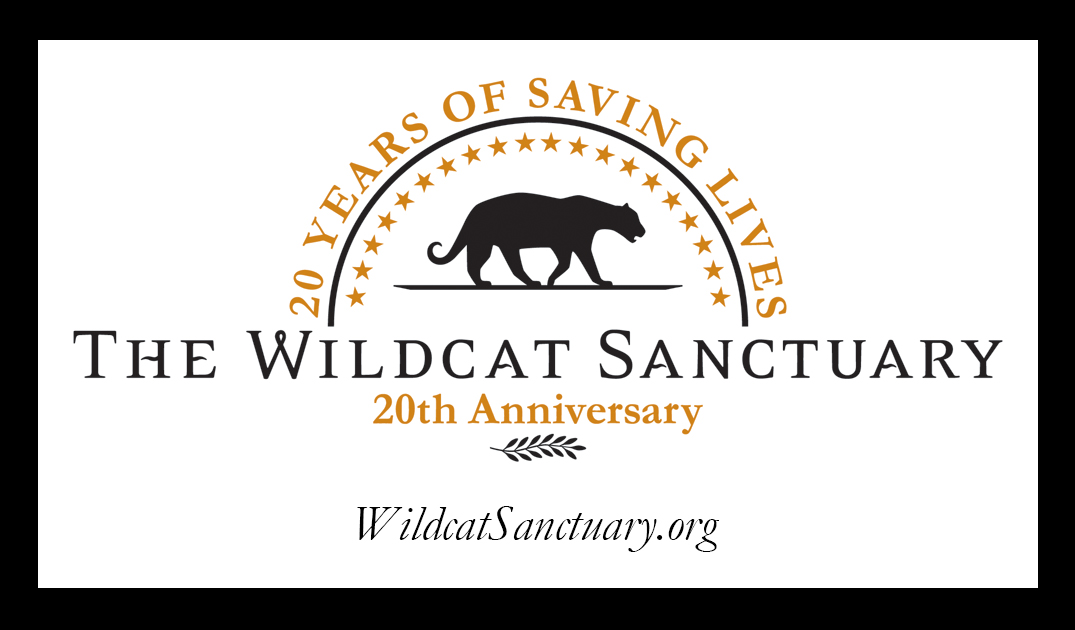 TWS provides a natural sanctuary to wild cats in need and inspires change to end the captive wildlife crisis.