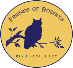 Our mission is to protect, preserve, and enhance the Thomas Sadler Roberts Bird Sanctuary as a thriving, undeveloped habitat and sanctuary for birds and other native wildlife.