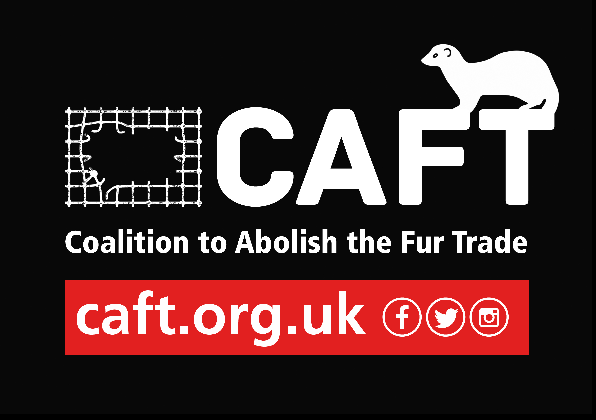 CAFT has helped regenerate the grass-roots campaign against the fur trade throughout the UK. Through investigations, education, campaigns and demonstrations we have exposed the horror of the fur trade and helped establish and continue many anti-fur actions across Britain.