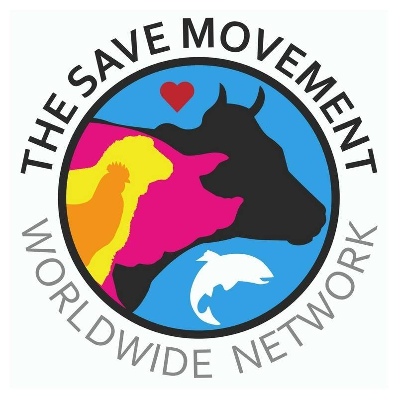 The Save Movement  is comprised of groups around the world who bear witness of pigs, cows, chickens and other farmed animals en route to slaughter. Our goals are to raise awareness about the plight of farmed animals, to help people become vegan, and to build a mass-based, grassroots animal justice movement.