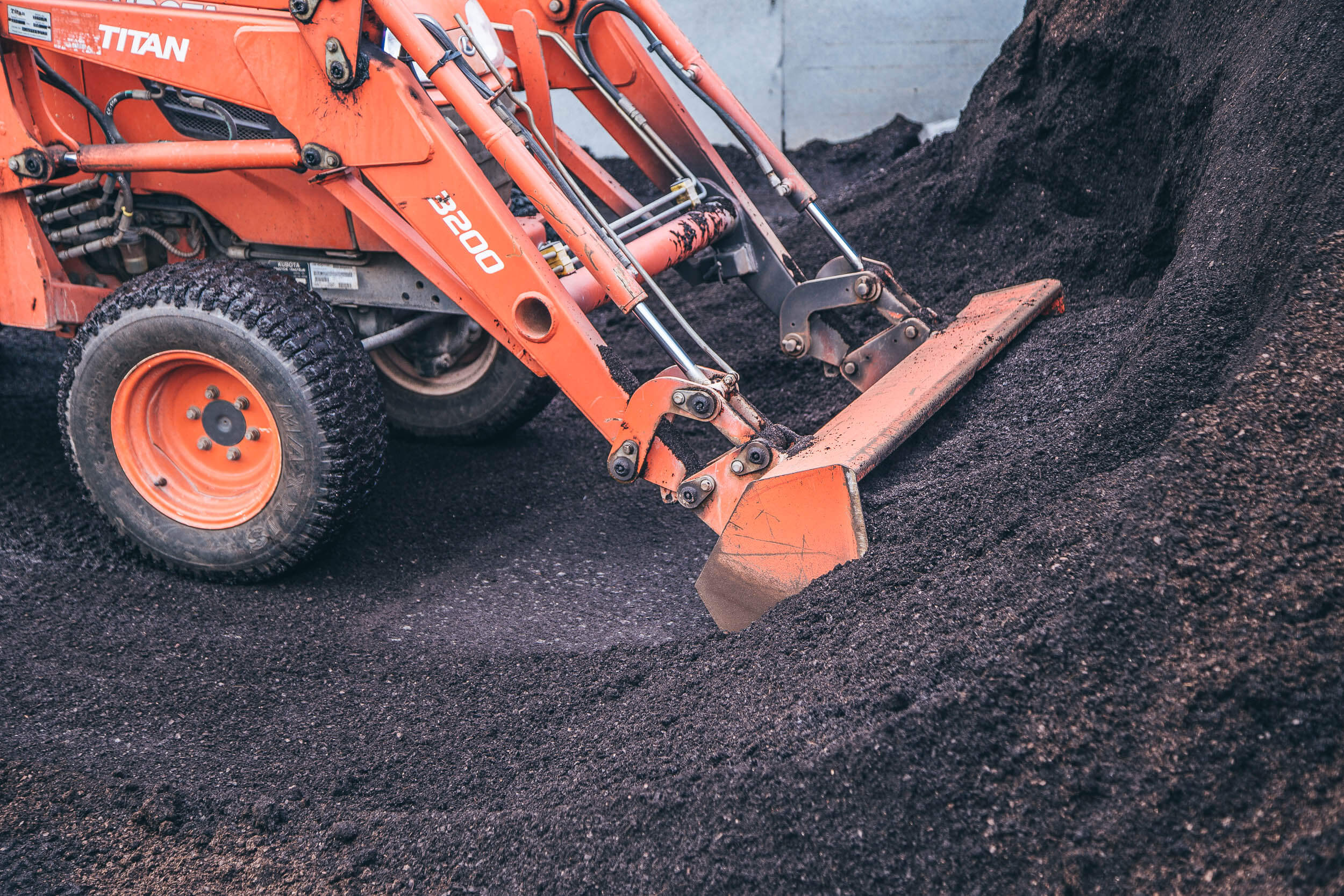 A soil blend suited to the eventual planting location gives every seed the best chance in life