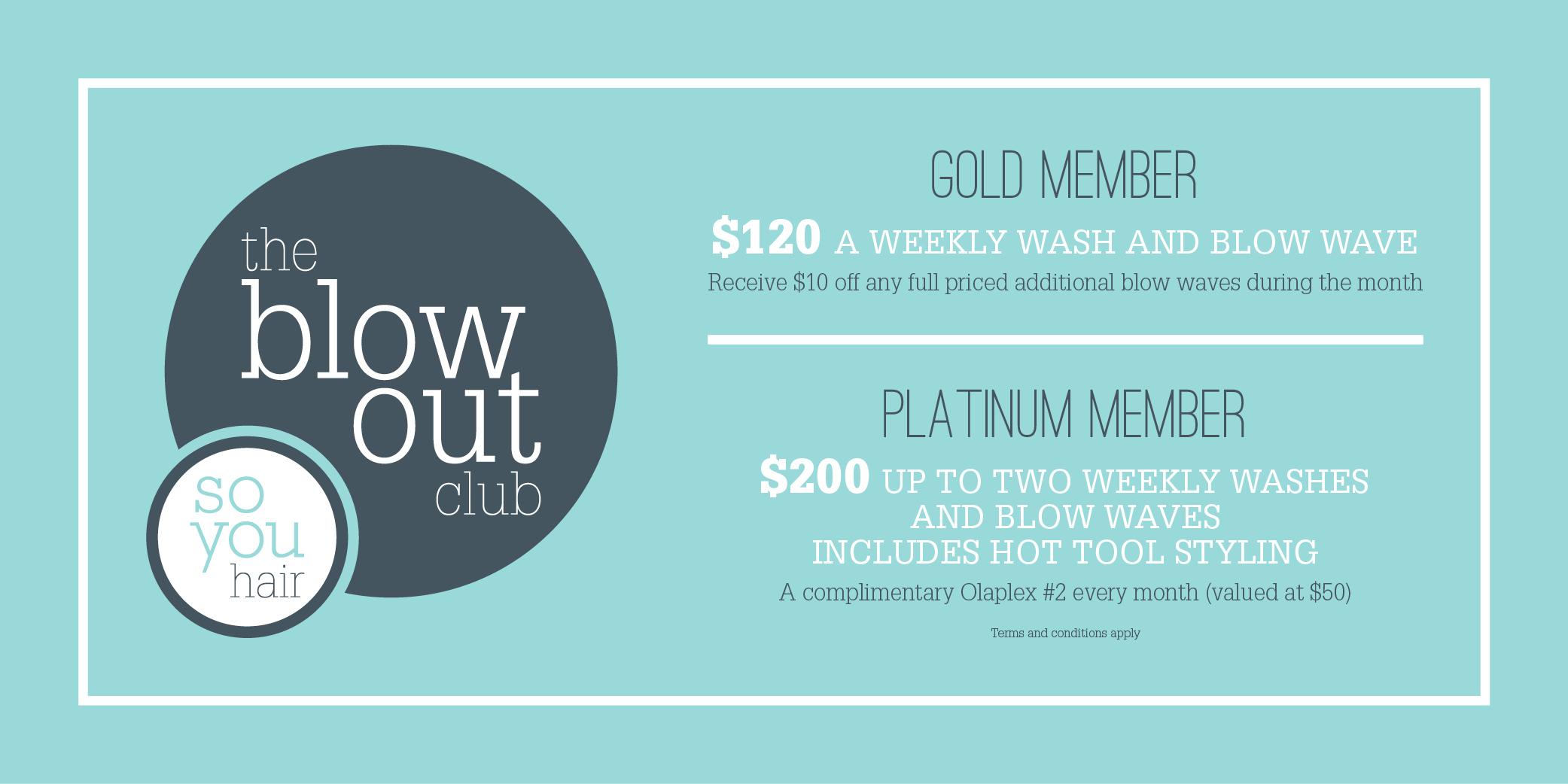 12122 Blowout Club Web Banner FINAL.jpg