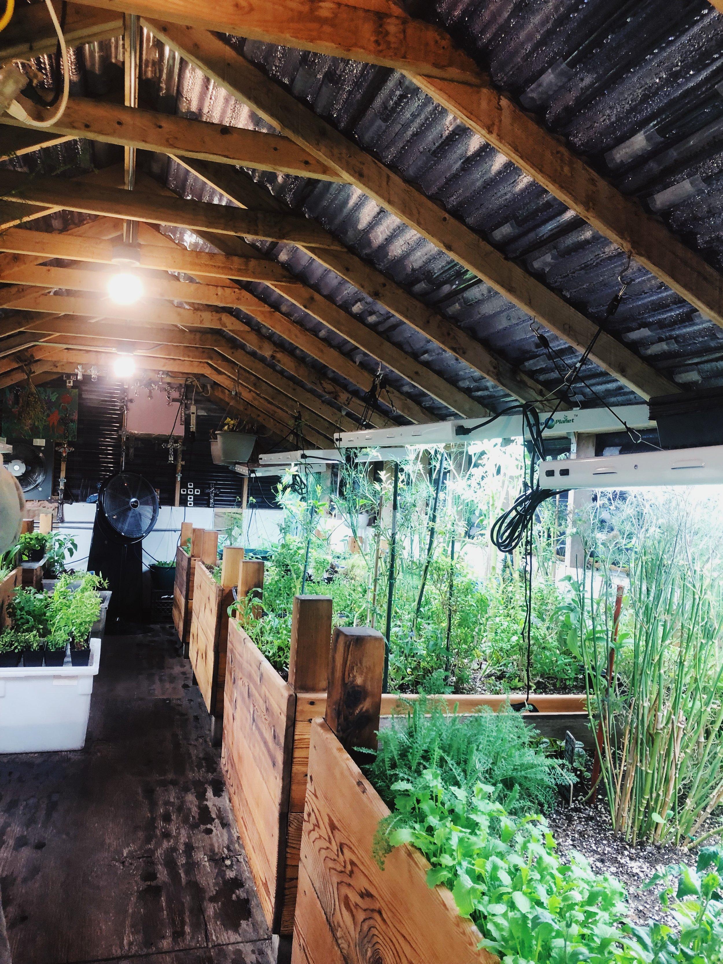 The Urban Garden Greenhouse at Eden