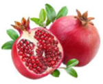 Pomegranate 1.png