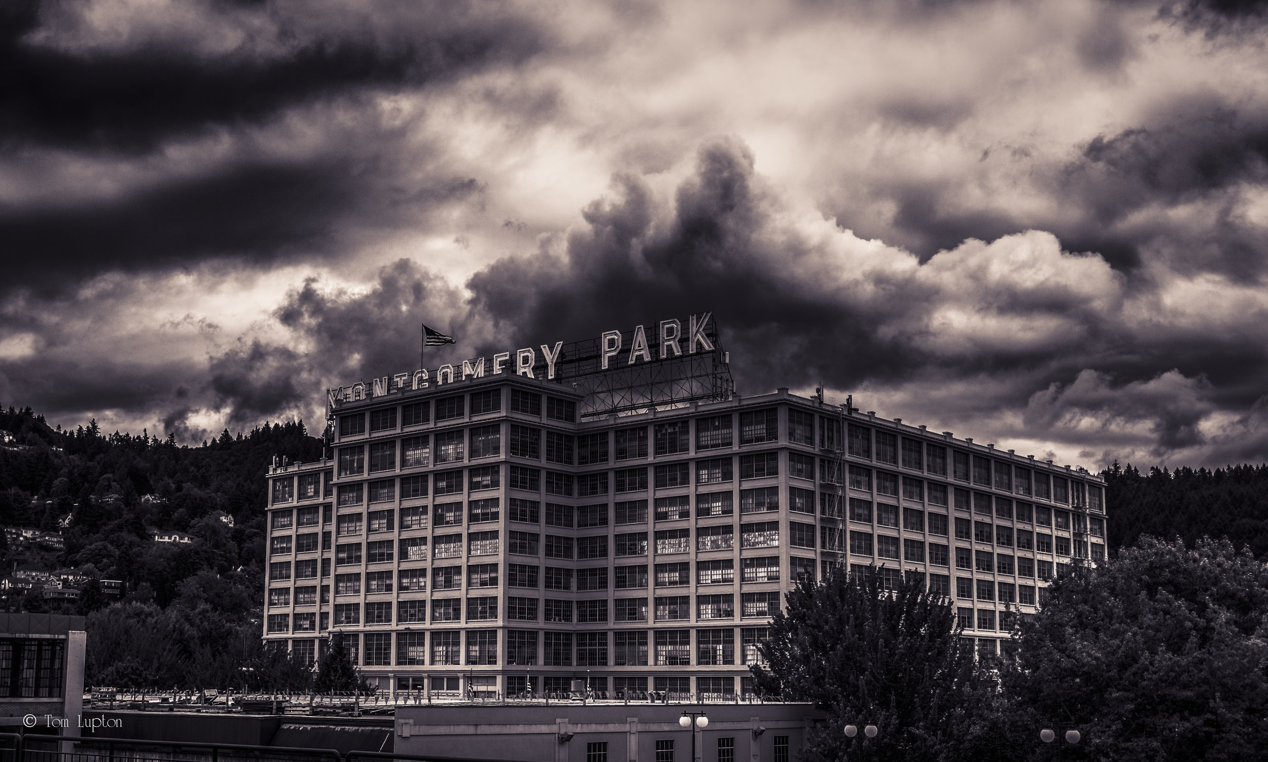 Tom_Lupton_Photography_Montgomery_Park.jpg