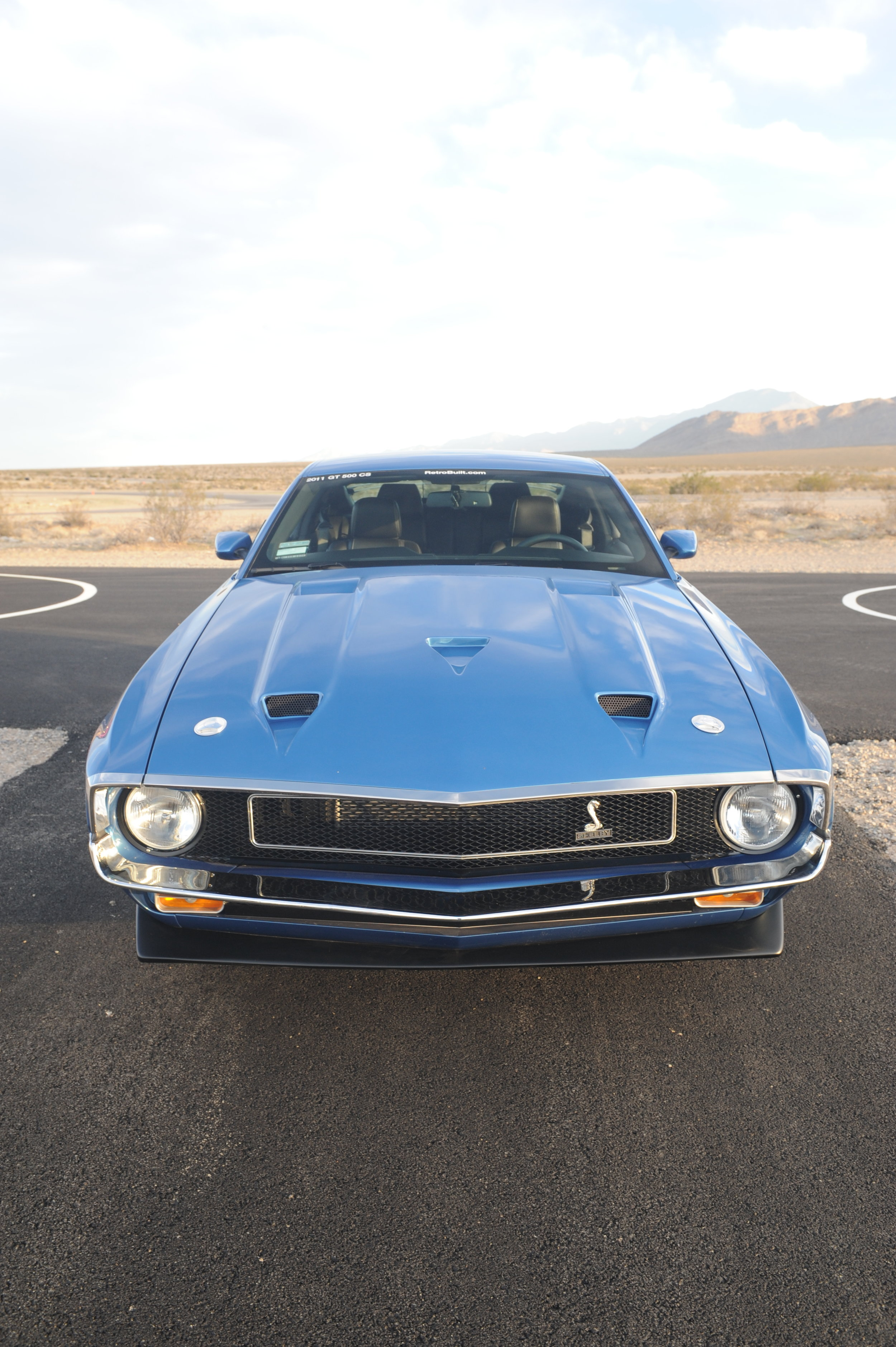 blue shelby front on.jpg