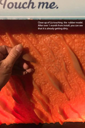 TOUCHABLE OCTOPUS SKIN (2017) -