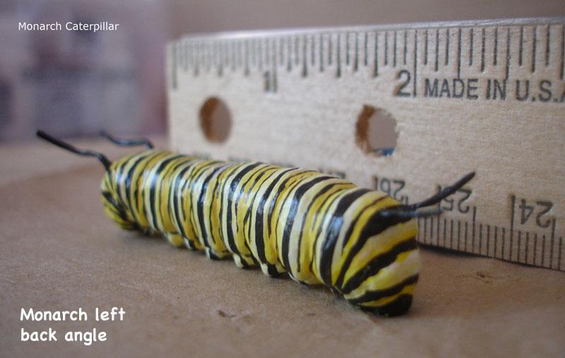 Caterpillars24_text.jpg