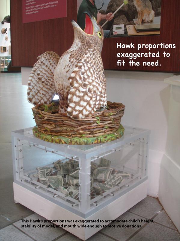 Hawk10_text.jpg