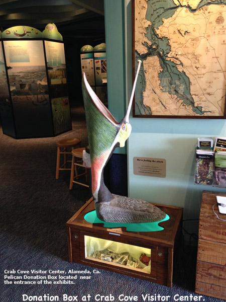 Pelican_Exhibit3Lg_text.jpg