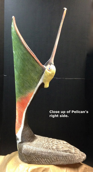 Pelican_Finished2Lg_text.jpg