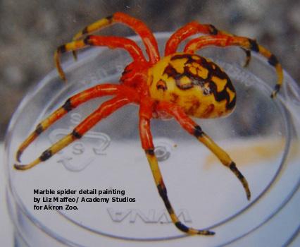 Spider_paint-text.jpg