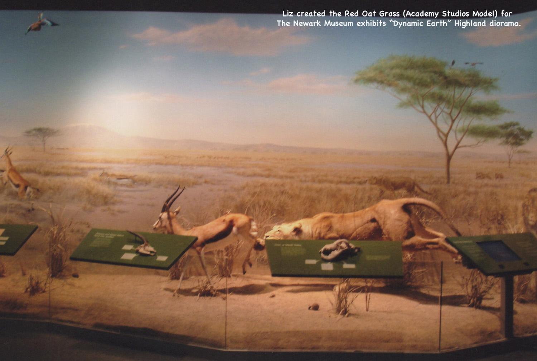 NewarkMuseum-RedOatGrass Diorama72dpi.jpg